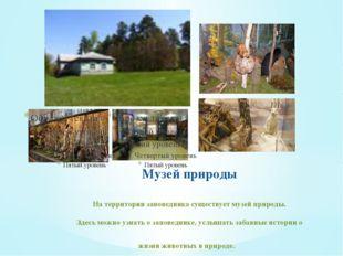Музей природы На территории заповедника существует музей природы. Здесь можно