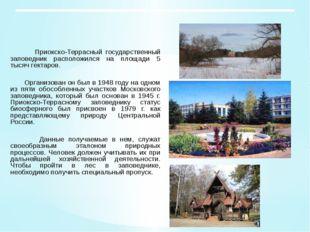Приокско-Террасный государственный заповедник расположился на площади 5 тыся
