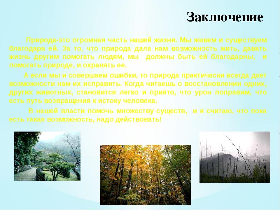 Заключение Природа-это огромная часть нашей жизни. Мы живем и существуем благ...
