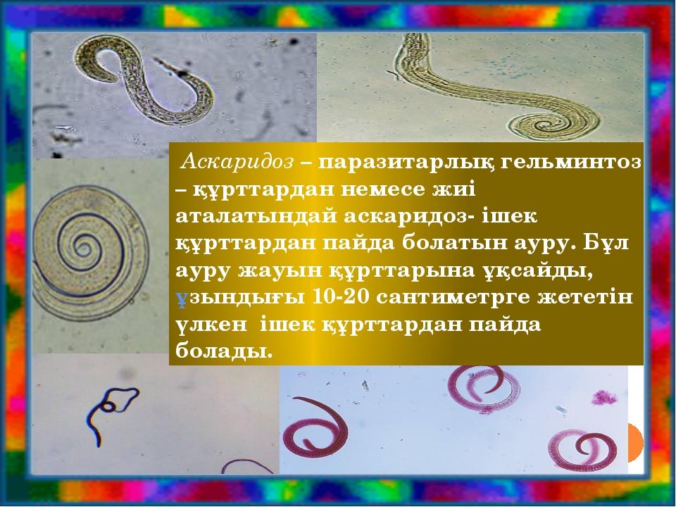 Аскаридоз – паразитарлық гельминтоз – құрттардан немесе жиі аталатындай аска...