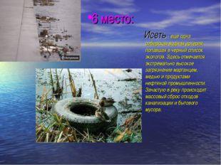 6 место: Исеть - еще одна сибирская водная артерия, попавшая в черный список