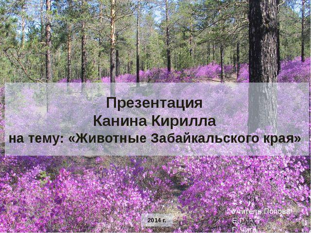 Презентация Канина Кирилла на тему: «Животные Забайкальского края» 2014 г. У...