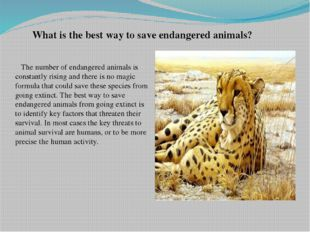 What is the best way to save endangered animals? The number of endangered an