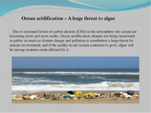 Ocean acidification – A huge threat to algae Due to increased levels of carbo