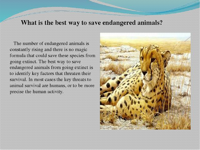 What is the best way to save endangered animals? The number of endangered an...