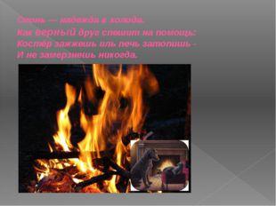 Огонь — надежда в холода. Как верный друг спешит на помощь: Костёр зажжешь ил