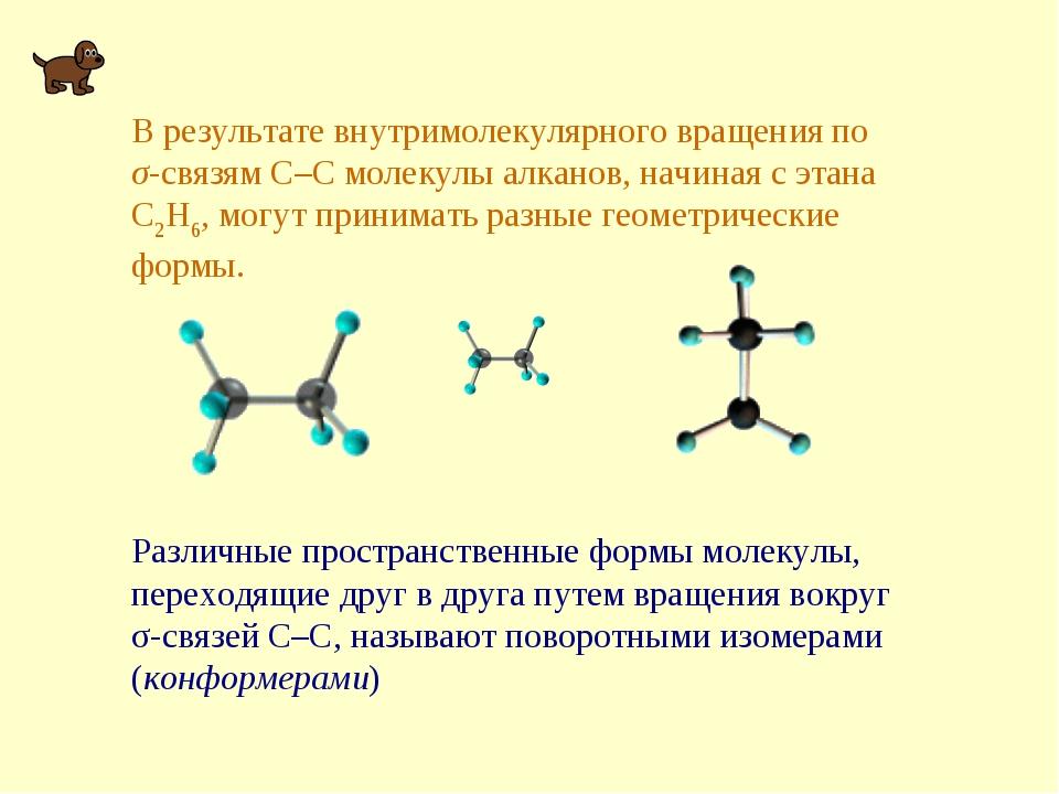 В результате внутримолекулярного вращения по σ-связям С–С молекулы алканов, н...