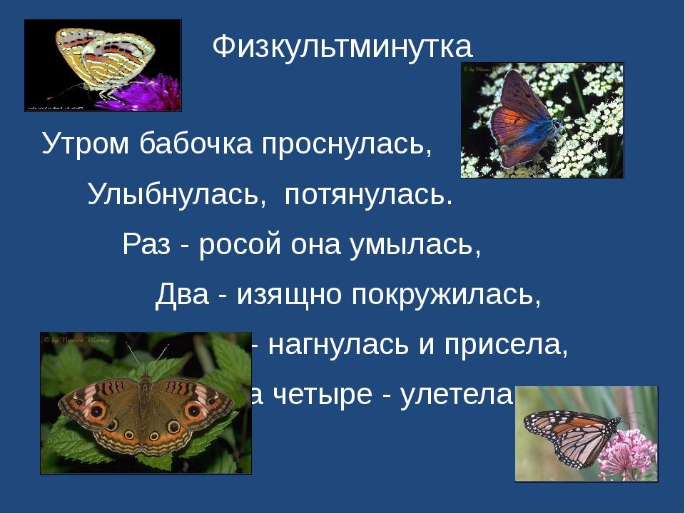 Физкультминутка Утром бабочка проснулась, Улыбнулась, потянулась. Раз - ро...
