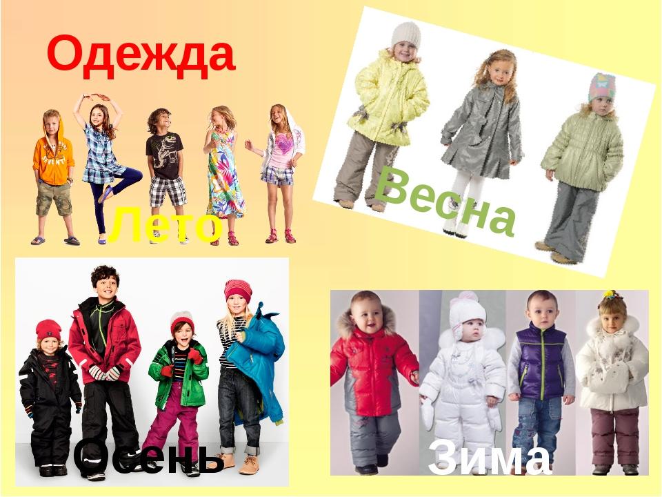 Одежда Зима Лето Весна Осень