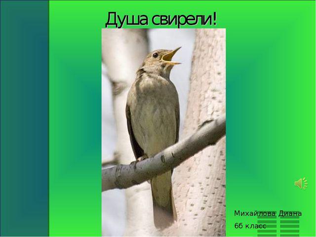 Душа свирели! Михайлова Диана 6б класс