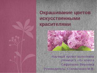Научный проект выполнила ученица 5 «А» класса Сафронова Вероника Руководитель