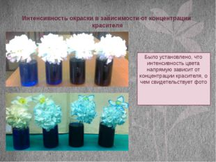 Интенсивность окраски в зависимости от концентрации красителя Было установлен