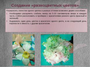 Создание «разноцветных цветов» Разукрасить лепестки одного цветка в разные от