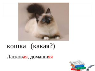 кошка (какая?) Ласковая, домашняя