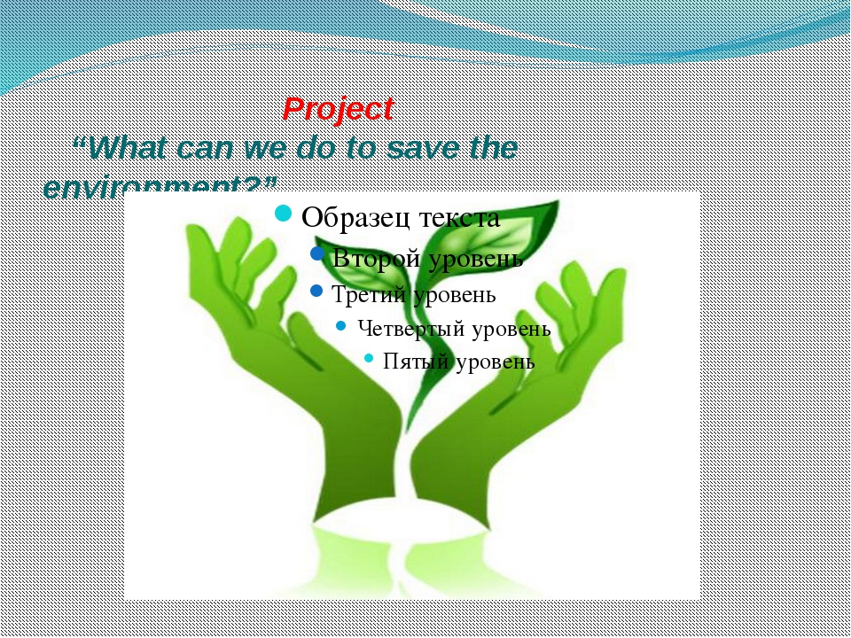 "Project ""What can we do to save the 	 		 environment?"""
