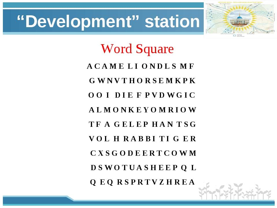 """Development"" station Word Square A C A M E L I O N D L S M F G W N V T H O R..."
