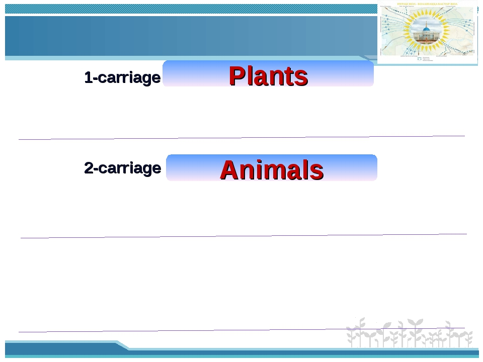 1-carriage 2-carriage Plants Animals