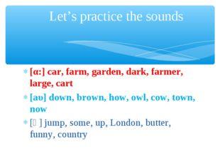[α:] car, farm, garden, dark, farmer, large, cart [аυ] down, brown, how, owl,
