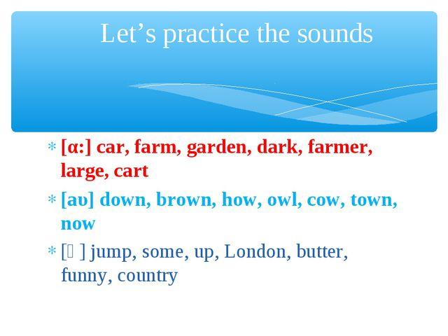 [α:] car, farm, garden, dark, farmer, large, cart [аυ] down, brown, how, owl,...