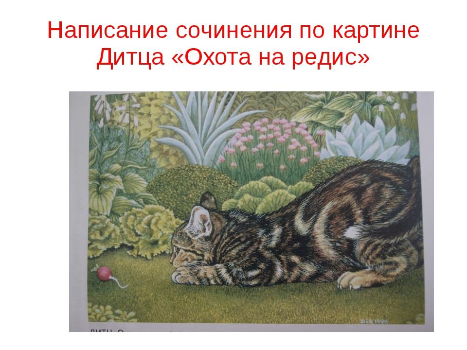 Написание сочинения по картине Дитца «Охота на редис»