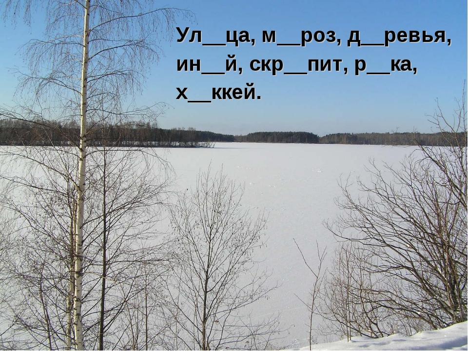 Ул__ца, м__роз, д__ревья, ин__й, скр__пит, р__ка, х__ккей.