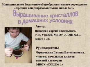 Автор: Яковлев Георгий Евгеньевич, г. В. Уфалей, МБОУ «СОШ №1», класс 5 «в»