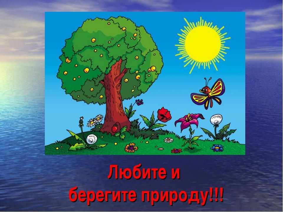 Любите и берегите природу!!!