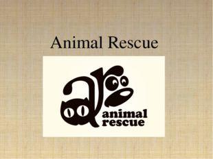 Animal Rescue {