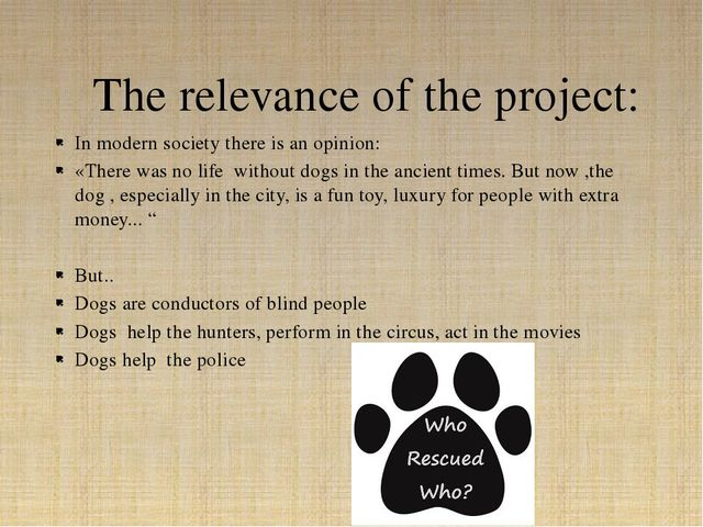 In modern society there is an opinion: «There was no life without dogs in the...