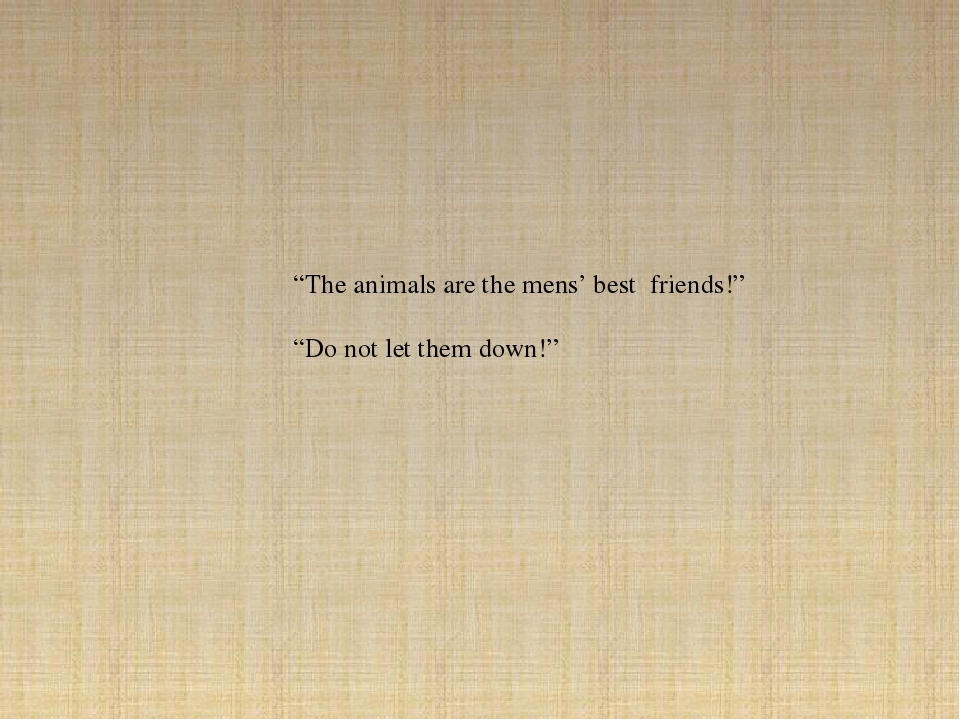 """""""The animals are the mens' best friends!"""" """"Do not let them down!"""""""