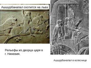 Ашшурбанапал охотится на льва Ашшурбанапал в колеснице Рельефы из дворца цар