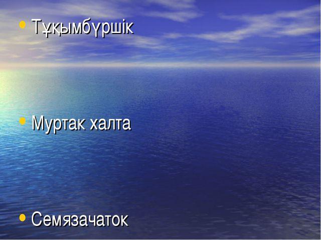 Тұқымбүршік Муртак халта Семязачаток