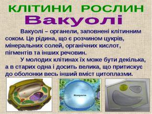 Вакуолі – органели, заповнені клітинним соком. Це рідина, що є розчином цук