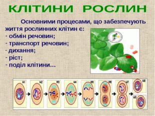 Основними процесами, що забезпечують життя рослинних клітин є: обмін речовин