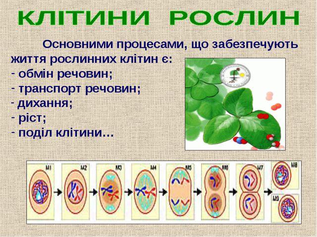 Основними процесами, що забезпечують життя рослинних клітин є: обмін речовин...