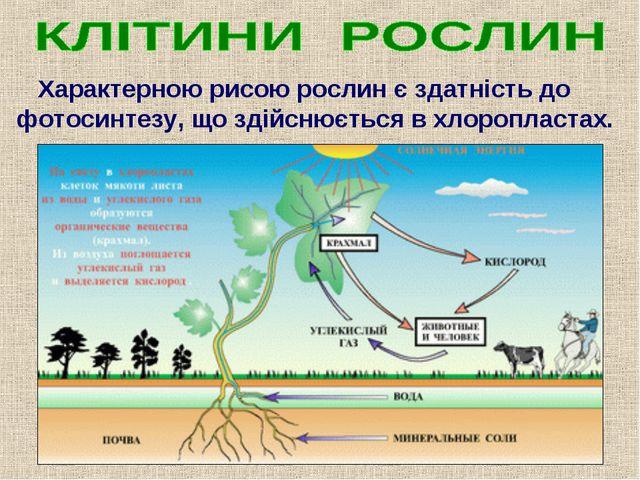 Характерною рисою рослин є здатність до фотосинтезу, що здійснюється в хлоро...