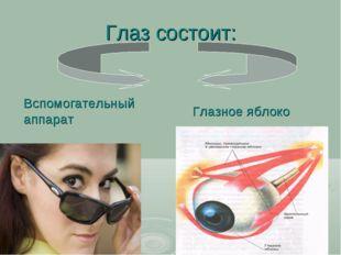 Глаз состоит: Глазное яблоко Вспомогательный аппарат