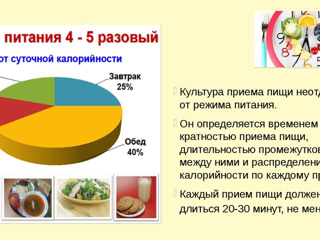 Культура приема пищи неотделима от режима питания. Он определяется временем...