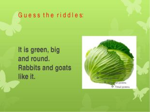 G u e s s t h e r i d d l e s: It is green, big and round. Rabbits and goats
