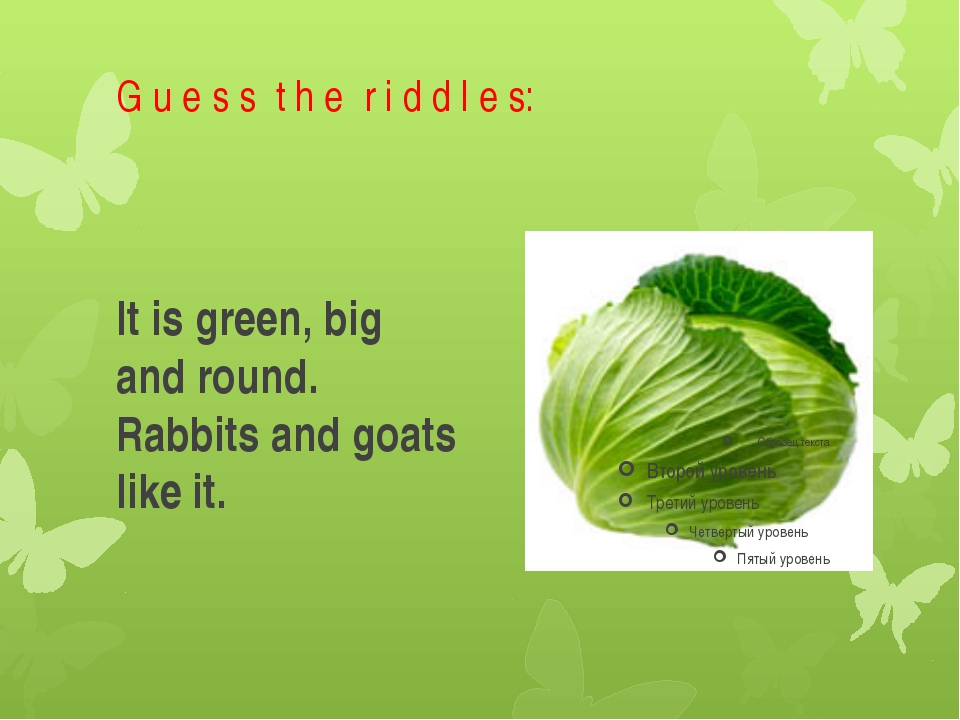 G u e s s t h e r i d d l e s: It is green, big and round. Rabbits and goats...