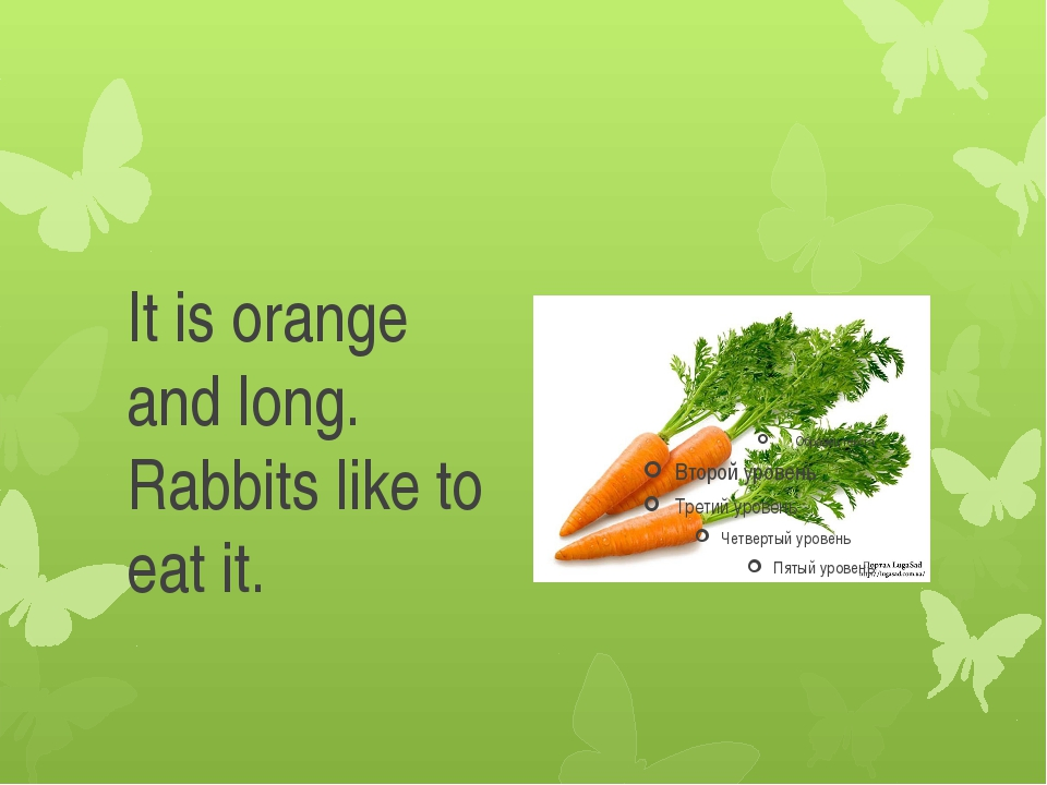 It is orange and long. Rabbits like to eat it.