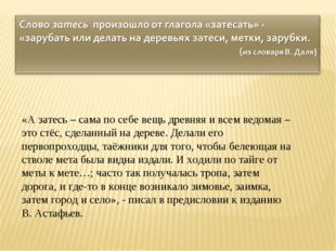 «А затесь – сама по себе вещь древняя и всем ведомая – это стёс, сделанный н
