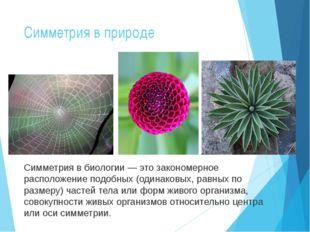 Симметрия в природе Симметрия в биологии — это закономерное расположение подо