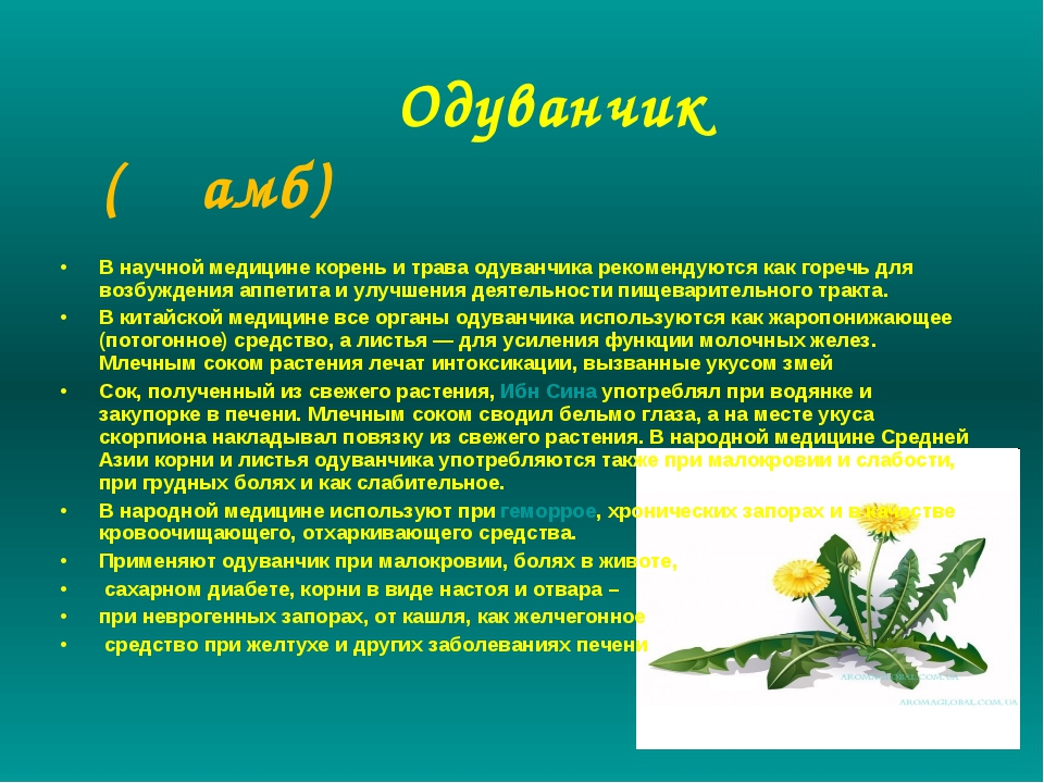 Одуванчик (Җамб) В научной медицине корень и трава одуванчика рекомендуются...