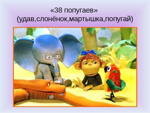 «38 попугаев» (удав,слонёнок,мартышка,попугай)