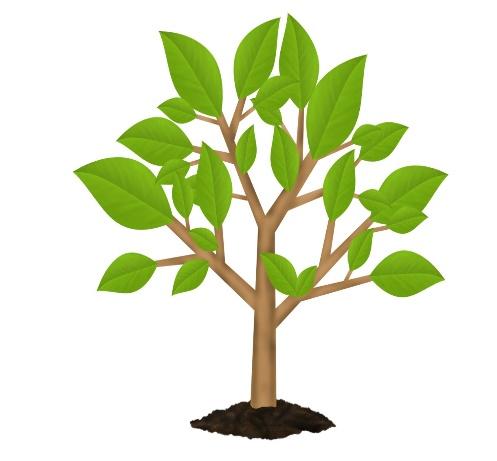 C:\Users\Meridian05ru\Desktop\green-earth-tree-environment-symboljpg-818556.jpg