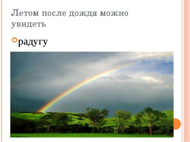 Летом после дождя можно увидеть радугу
