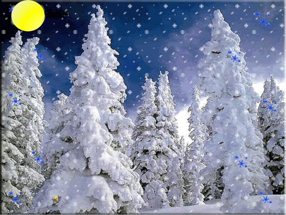 Картинки, зимний лес гифка