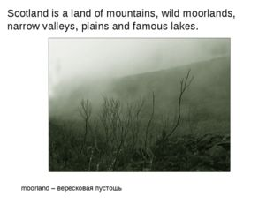 Scotland is a land of mountains, wild moorlands, narrow valleys, plains and f