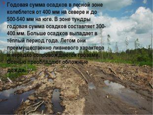 Годовая сумма осадков в лесной зоне колеблется от 400 мм на севере и до 500-